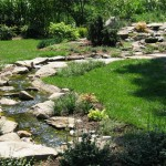 Water Feature - Stream bed & Pond - Takoma Park